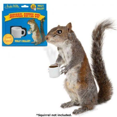 Mini Kaffeetasse für Eichhörnchen