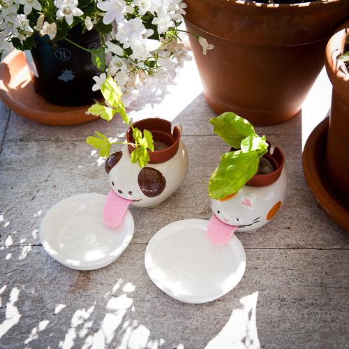 Schlauer Blumentopf mit Wasserversorgung