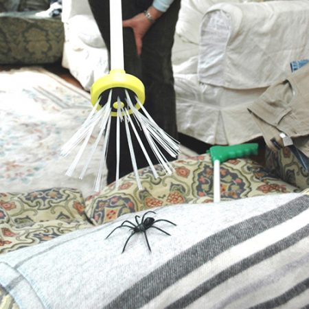 Spidercatcher Spinnenfänger