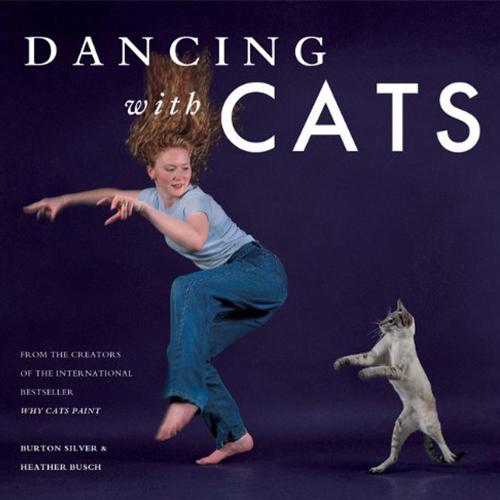 Mit Katzen tanzen - Geschenk für Katzenbesitzer