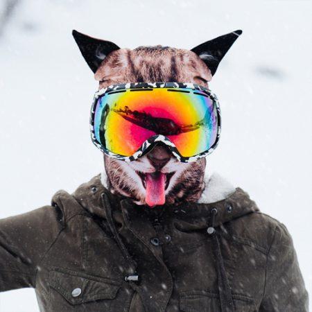 Sturmhaube Katze