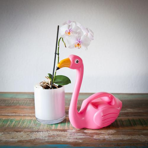 Flamingo Gießkanne - Geschenk für Blumen Liebhaber